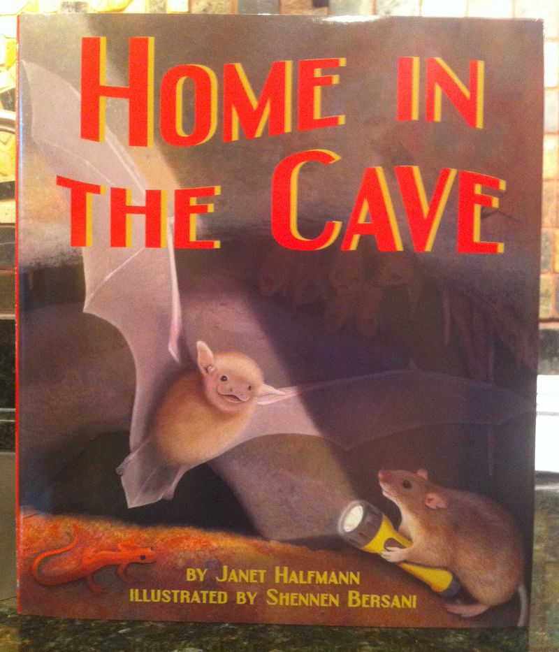 Home_in_the_Cave
