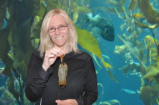Shennen visits the kelp forest