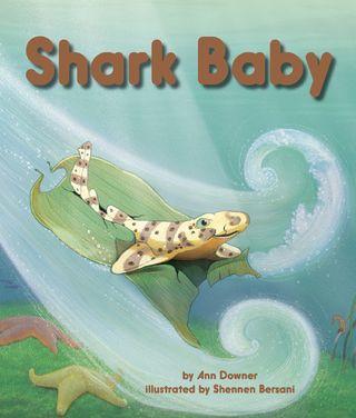 SharkBaby72