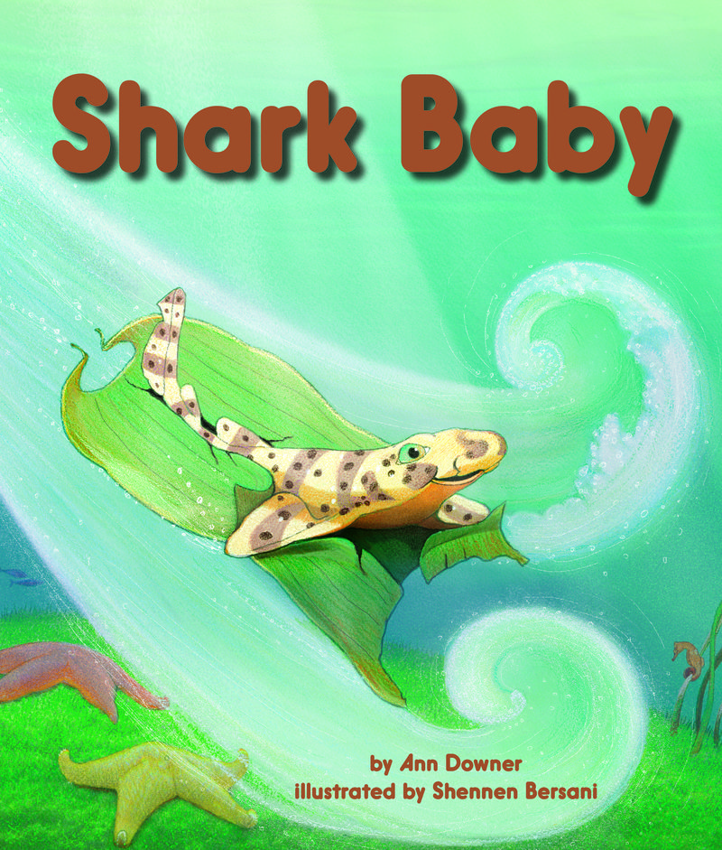 SharkBaby