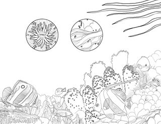SS coloring page 3