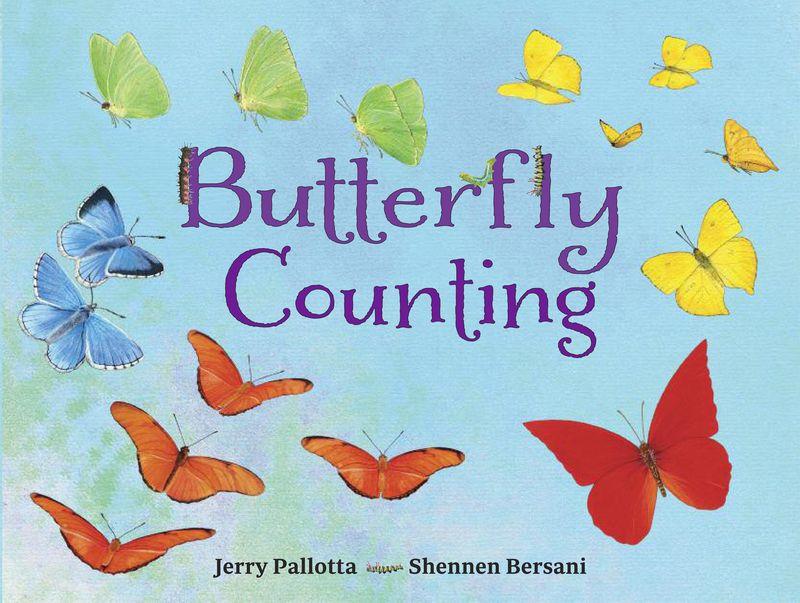 ButterflyCounting JKT final