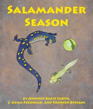 Salamanders-2-1