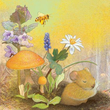Honeybee and Valerie