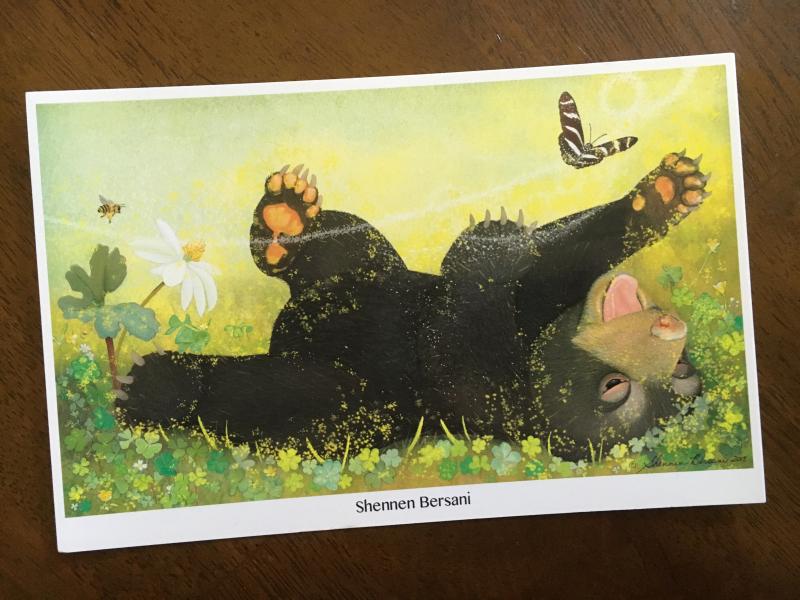 Shennen Bersani postcard